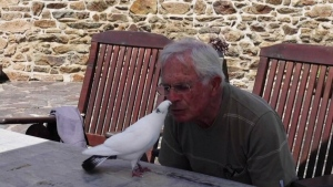 80-year-old describes his bond with an unlikely companion