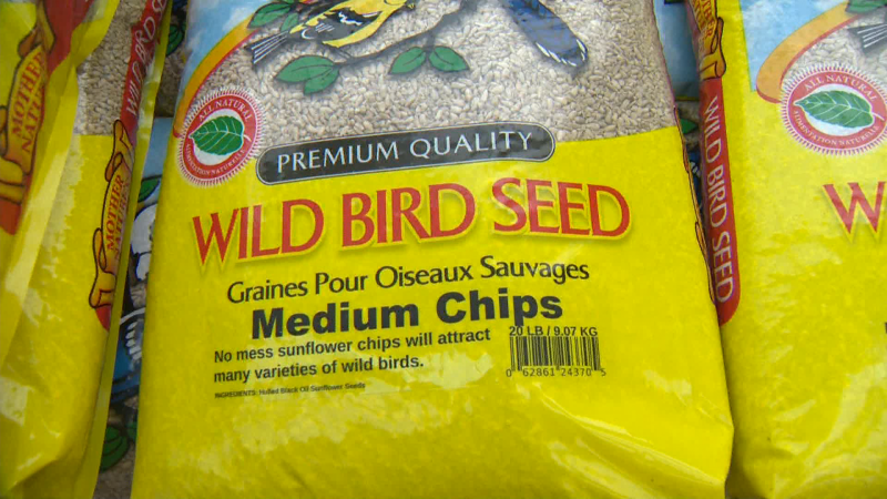 Golden Acre Home & Garden has a large variety of bird seed, feeders, and accessories to attract birds to your outdoor spaces.