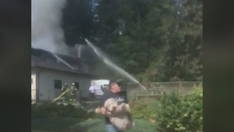Firefighters, neighbour save dogs from house fire