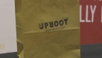 Edmonton's Uproot Food Collective supports local food products by assisting entrepreneurs with getting their product on the market. (Source: CTV News Edmonton)