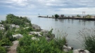 Three people were rescued from Lake Erie after their speed boat sank near Kingsville - June 19, 2021 (Alana Hadadean / CTV News)