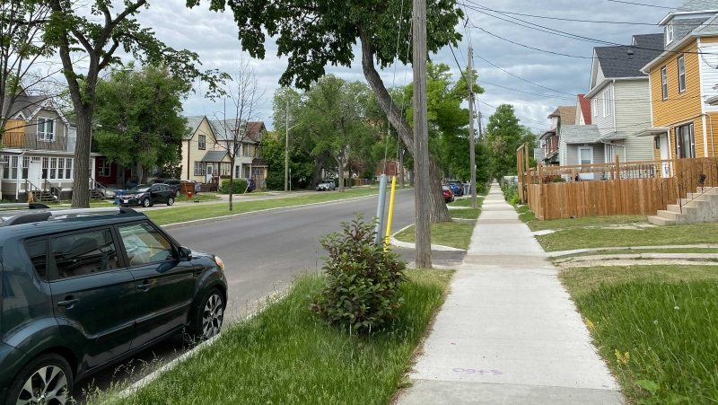 The 200 block of Burrows Avenue where police say a 12-year-old boy was stabbed. He later died from his injuries. Photo take June 19, 2021. (Source: Zachary Kitchen/CTV News)