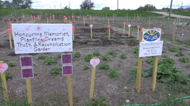 """The sign marking the """"Honouring Memories, Planting Dreams Truth and Reconciliation Garden"""" at a community garden off 13th Ave. (Mackenzie Read/CTV News)"""