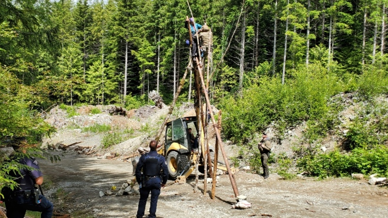 Police say they arrested eight people at anti-logging blockades on southern Vancouver Island Saturday. (BC RCMP)