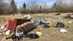 The George Genereux Urban Regional Park amidst a clean-up. (Courtesy: Julia Adamson/Friends of the Saskatoon Afforestation Areas)