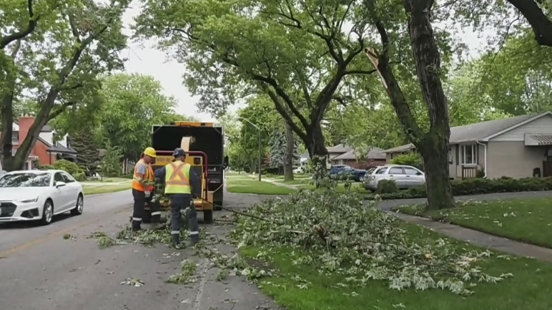 Minimal damage after heavy storm