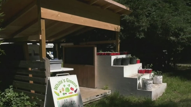 Metchosin farm stand target of recent thefts