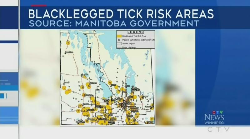 2021 bad for ticks so far in southern Manitoba