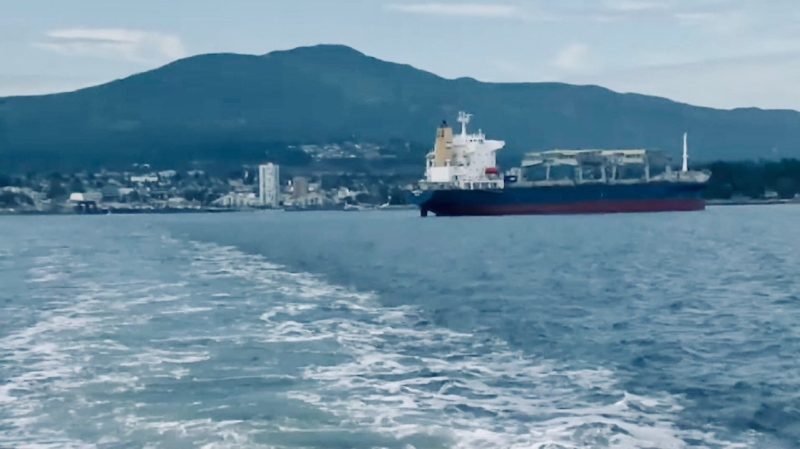 Currently there is no plan in place to remove waste from cargo ships that anchor in the Port of Nanaimo. (CTV News)