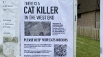 A poster in a west Ottawa neighbourhood warning of a potential serial cat killer. At least seven cats have been found dead in the area, and it is believed they were killed intentionally. (Katie Griffin / CTV News Ottawa)