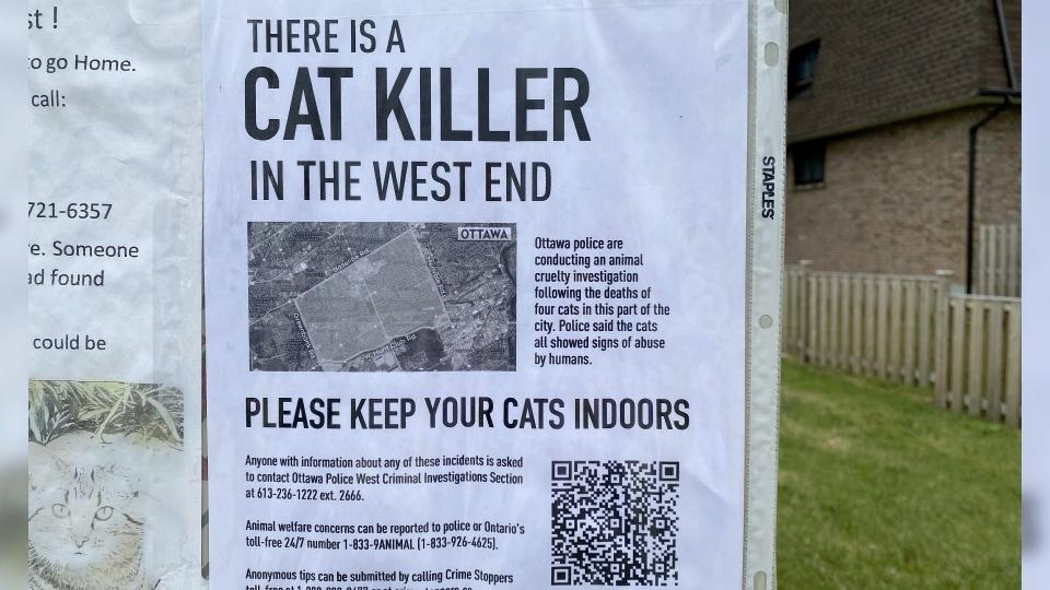 Cat Killer Poster