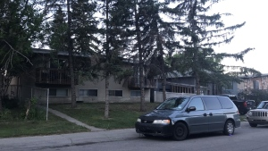Two people are in custody after three people were stabbed in an early morning fight Wednesday at a duplex in Radisson Heights.