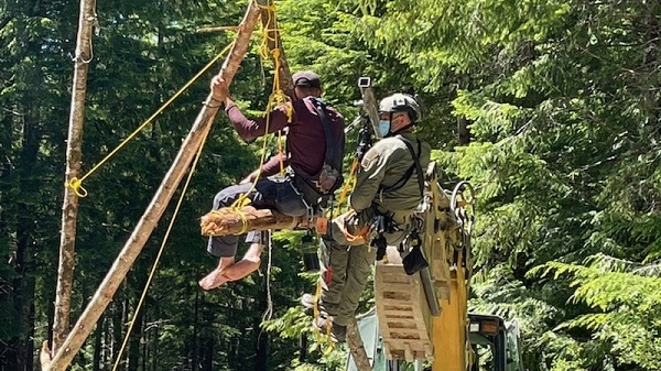 An old-growth logging protester is suspended from a bipod in the Fairy Creek watershed in June 2021. (RCMP)