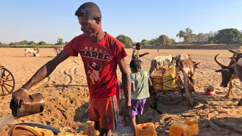 Men dig for water in the dry Mandrare river bed in Madagascar on November 9, 2020. (Laetitia Bezain/AP via CNN)
