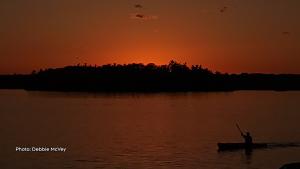 Otter lake kayaker, Lombardy, Ont.  (Debbie McVey /CTV Viewer)