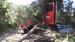 Transport truck collides with home in Ont.