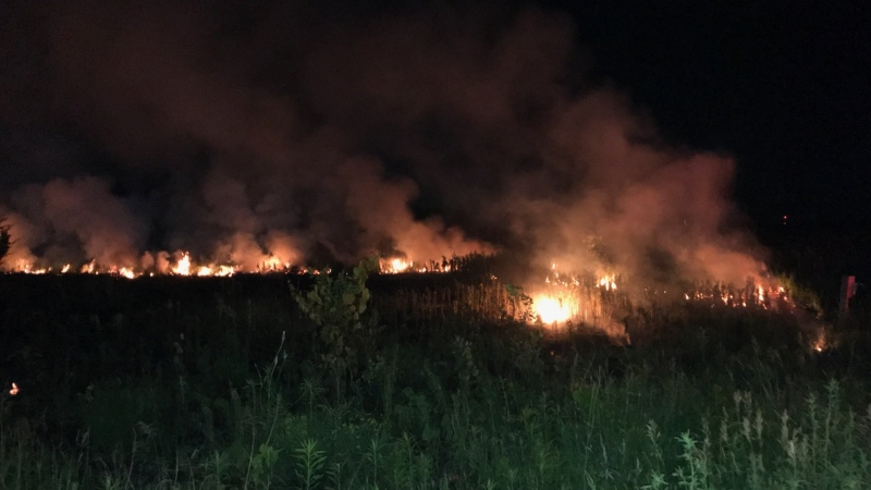 A large brush fire ignited south of London along Colonel Talbot Road on Thursday, June 24, 2021. (LFD Twitter)