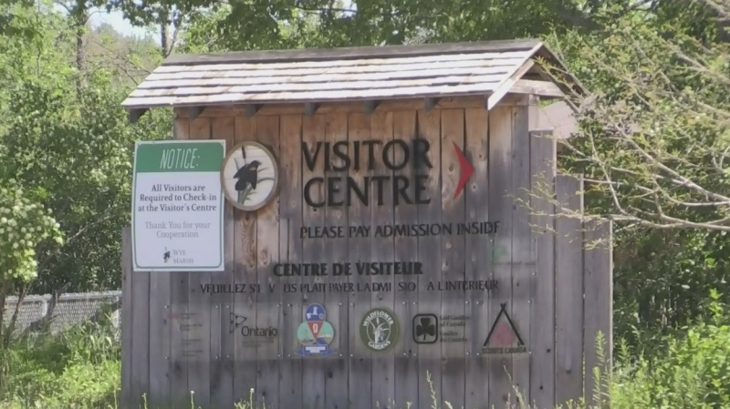 Visitor Centre sign at Wye Marsh (CTV News Barrie)