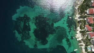 6,000-year-old submerged settlement discovered