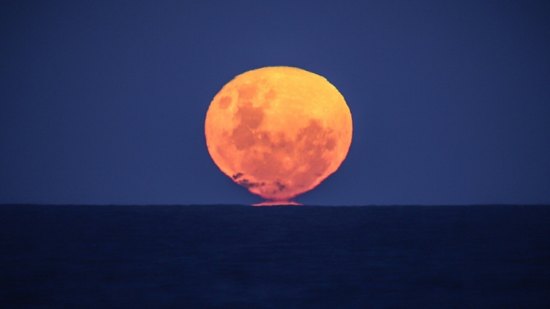 The strawberry moon rises over the ocean on Narrawallee Beach in New South Wales, Australia, on June 6, 2020. (David Gray/AFP/Getty Images/CNN)