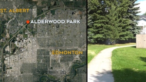 Women attacked in St. Alberta, Alta.