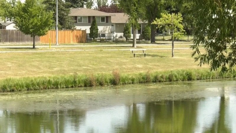 Group pushes to save green space from development