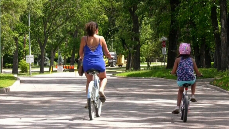 City hall debates future of Wellington bike route