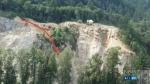 Concerns about rare falcons near blast site