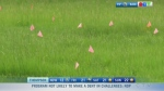 Cowessess update, Habs advance : Morning Live