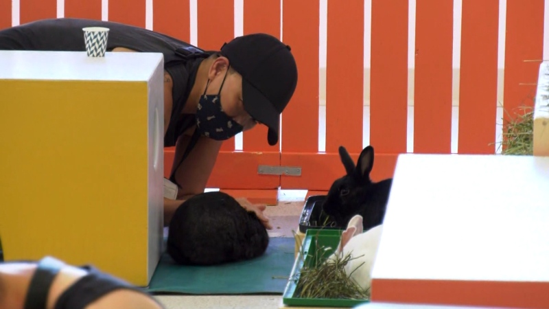 The Bunny Cafe has opened in Vancouver, but the cafe part of the business has been delayed.