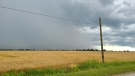 Clouds over a field in Windsor-Essex, Ont. (Courtesy Jacob Kerester)