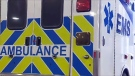 A 39-year-old man died Thursday after being struck by a truck east of Lake Louise in Banff National Park