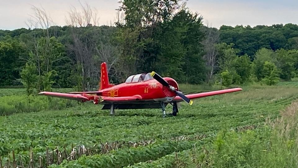 Single-engine plane that hit a woman