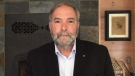 Mulcair: Green Party intent on 'self-immolation'