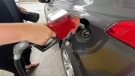Gas prices have been hitting record levels. Here's how you can squeeze the most out of every drop.