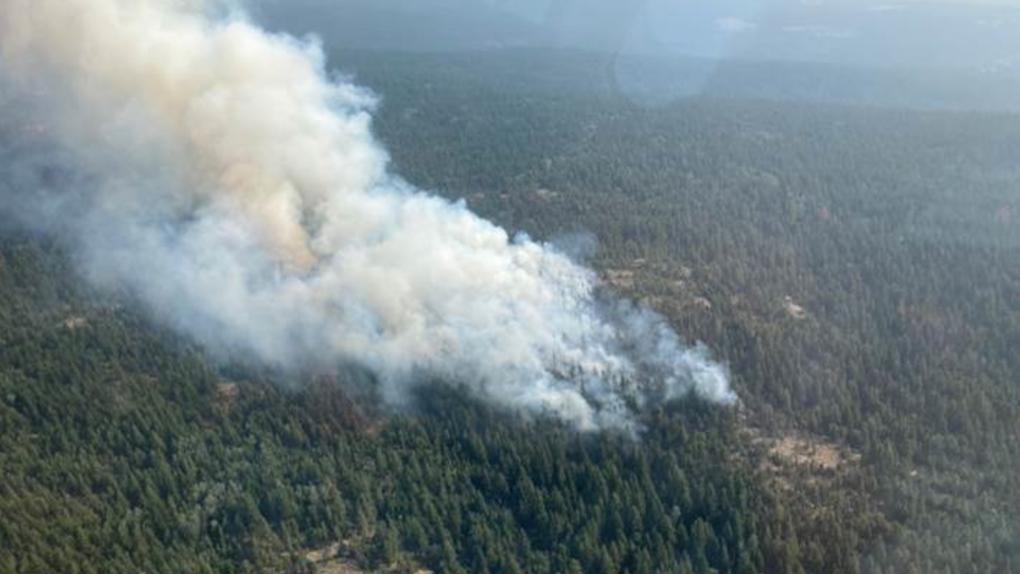 Tremont Creek wildfire