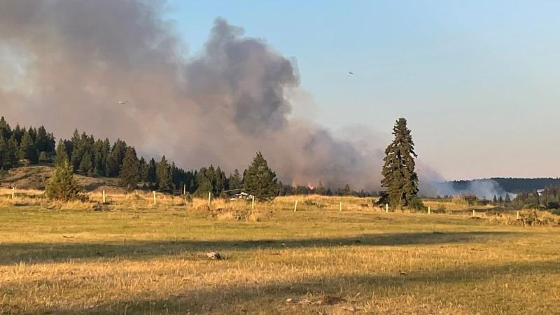 A wildfire burns near Lytton, B.C. in this Wednesday, June 30, 2021 handout photo. THE CANADIAN PRESS/Jo-Anne Beharrell