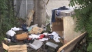 A living area for the homeless in London, Ont. is seen Friday, July 16, 2021. (Daryl Newcombe / CTV News)