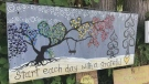 Sawatsky Sign-Off- Anna's Art