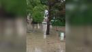 Belle River Neighbourhood after flooding - Saturday July 17, 2021 (Alana Hadadean / CTV News)