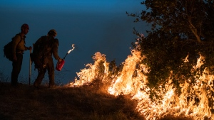 In this Sept. 11, 2020, file photo, firefighters light a controlled burn along Nacimiento-Fergusson Road to help contain the Dolan Fire near Big Sur, Calif. Crews across the west are lighting controlled burns and taking other steps to prepare for the 2021 fire season that follows the worst one on record. Prescribed burning gets rid of vegetation that can send flames into the forest canopy, where fire can spread easily, and makes the forest more fire resilient. (AP Photo/Nic Coury, File)