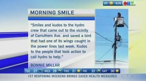 Morning Smile for July 19, 2021
