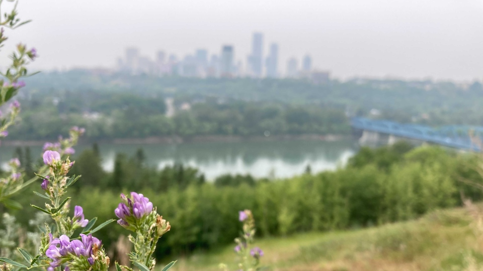 Smoke, Edmonton