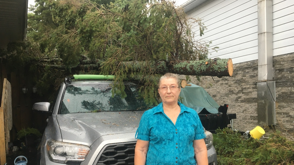 Tree fell on Bonfield woman's room and truck