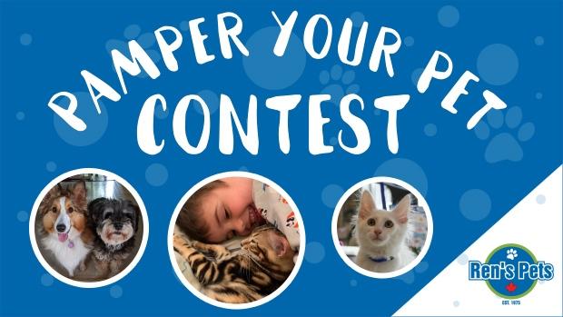 Pamper Your Pet Contest Header