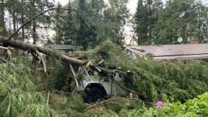 A vehicle is buried under debris after a storm blew through the Bears Paw Crescent on Whitestone Lake near Dunchurch, Ont on Tues., July 20, 2021. (Courtesy Tracy Holmwood)