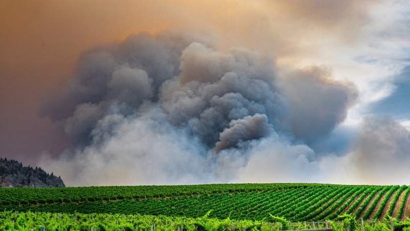 The Nk'Mip Creek fire north of Osoyoos, B.C., is seen from the RCMP perimeter on Monday, July 19, 2021. (Kyle Murray)