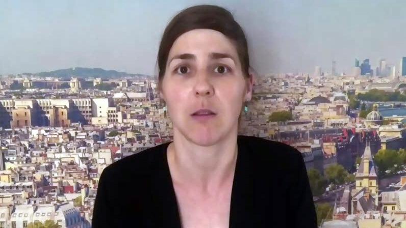 Freelance reporter Lisa Louis