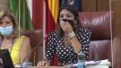 Big rat causes stir inside Spanish parliament