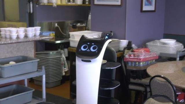 Cat-like robot